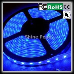 5050 RGB LED Strip di Soft LED Lights