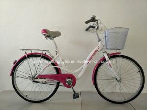 판매를 위한 Popular City Bike Sh C002 24명 인치 숙녀