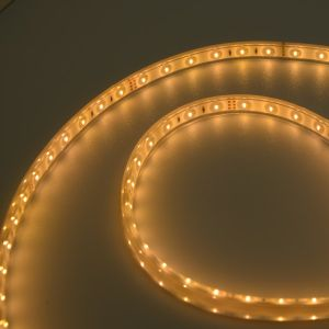 Doppio indicatore luminoso di striscia di disegno LED di colore di SMD 3014