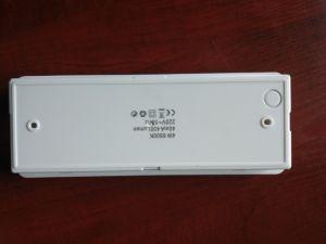 1038 Boîtier en plastique de sortie de secours Rechargeable LED témoin de cloison de la Chine avec Ni-CD pour des enseignes de sortie de la batterie