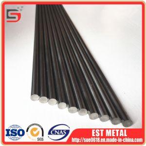 Tantalium het Van uitstekende kwaliteit van ASTM B365 RO5200 om Staaf