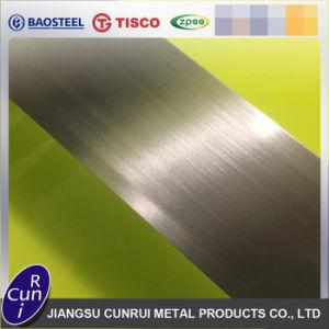 Incoloy de alta calidad 800h de la placa de acero inoxidable para la venta
