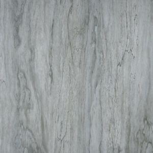 Rustieke Glazed Floor Tile voor Interior en Exterior (GP6031)