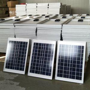 De Goedkope Prijs van zonnecellen 40W Poly