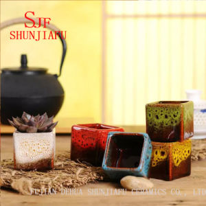 Decoração de flores de cerâmica Pot com cores diferentes