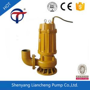 1.1Kw pequeño sumergible de agitador de la bomba de sumidero para Industrial