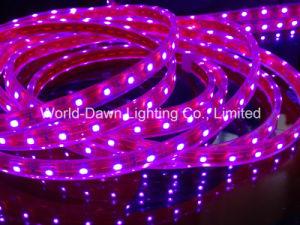 Flexible de LED SMD3528/5050 Tira Rosa Luz con Ce& RoHS