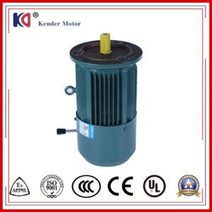 AC Embr électrique Moteur à induction pour vibreur