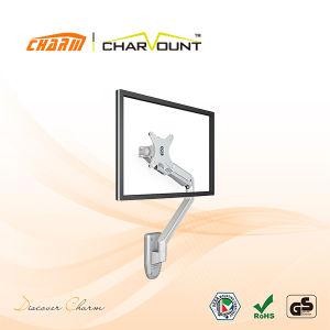 Customizable 10  - 27  LCD 텔레비젼 폴란드 설치 대 (CT-LCD-A101)