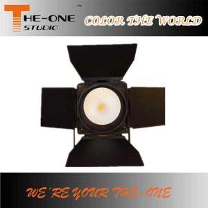 DMX RGBのフルカラーの穂軸LEDの同価はプロ照明できる