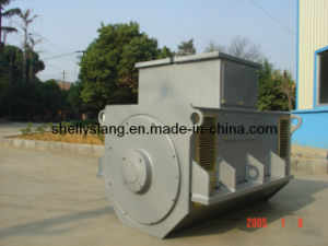 3 단계 Sychronous Brushless Alternator (IFC6 354-6 250kw/1000rpm)