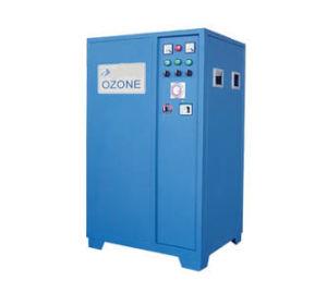 Pool-Ozon-Generator-Wasser-Reinigungsapparat (SY-G100G)