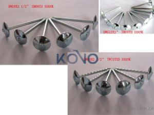 꼬이는 Shank Roofing Nails 9bwg