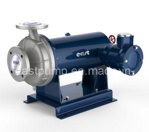 Horizontale Chemikalie eingemachte Motor-Pumpe