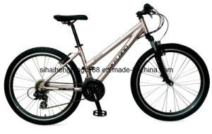 Lady VTT vélo de montagne (SH-MTB232)