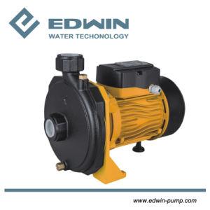 Cpm158 de la pompe à eau centrifuge intérieur