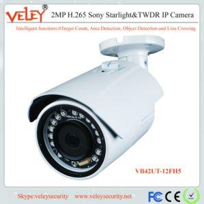 Die Infrarot IR-Fokus CCTV-Kamera-Lieferanten IP-Kamera HD imprägniern