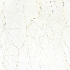 80*80 de volledige AMERIKAANSE CLUB VAN AUTOMOBILISTEN van de Rang van de Tegels van het Lichaam Marmeren