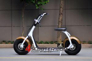 La clásica Rueda Grande De la Ciudad de 800W Scooter eléctrico Coco