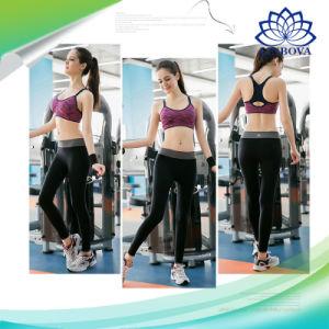 L'yoga di forma fisica delle donne riempita spinge verso l'alto il reggiseno respirabile di ginnastica