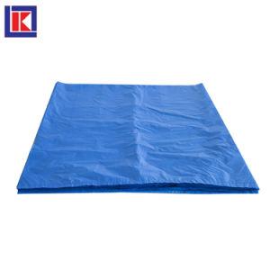 HDPE LDPE Gaylord camisas de cuadros de cartón para alimentos