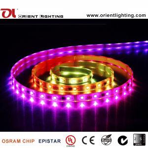 Ce 14.4W/M IP66 dell'UL che impermeabilizza 5060 Ai che inseguono l'indicatore luminoso di striscia flessibile del LED RGB