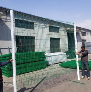 Revestido de PVC 3D Wire Mesh Garden cerca para venda a quente
