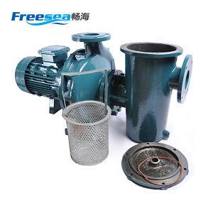 Pompa ad acqua ad alta pressione del ghisa di Freesea