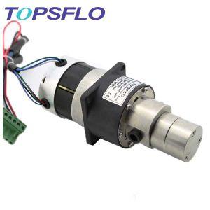 Topsflo magnetisches Laufwerk-Mikrozahnradpumpe