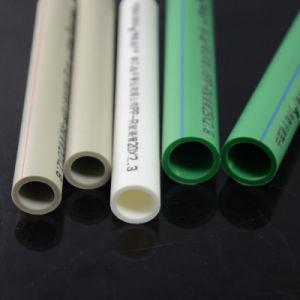 Accessorio per tubi di plastica di prezzi PPR del tubo di acqua del materiale da costruzione PPR migliore da vendere