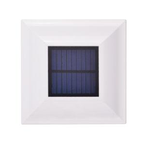 Черная горячая продажа ограждения с RoHS солнечной энергии для сада
