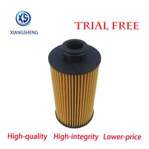 Авто фильтра питания производителя исходный фотон автомобильной Engine-Filtro масляный фильтр Aceite Sauvana OE A700000017
