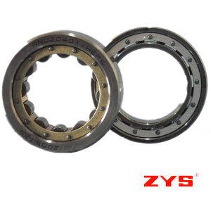 Rolamento de Esferas Manufacured Zys, Rolamento Giratório, Rolamento de cubo de roda Automática, Rolamento de roletes cônicos e rolamento de roletes cilíndricos com 60 anos de experiência