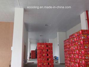 Kundenspezifische integrierte Kaltlagerung für Nahrungsmitteldas neue Halten und das Einfrieren