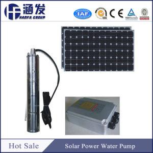 6Série SP de la pompe à eau solaire avec des prix bon marché pour l'irrigation