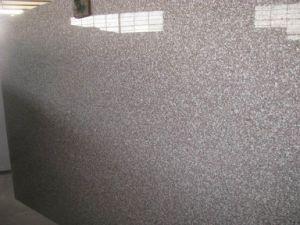 G664 Countertop van de Keuken van de Steen van het Graniet van Bainbrook Bruine