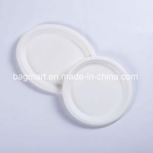 La bagasse de vaisselle jetable biodégradable Eco blanc de la plaque de pâte à papier