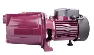 Sale를 위한 Watering 정원 Cheap를 위한 1HP 각자 Priming Centrifugal Jet Water Pump