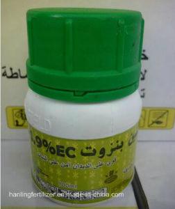 Aminosäure-Flüssigkeit-Düngemittel --Aminogemüse