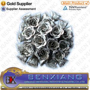 La decoración de hierro forjado diseño de flores ornamentales