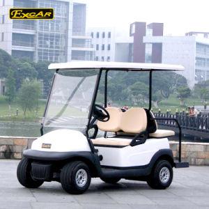 ゴルフコースの使用4のシートの小型ゴルフ電気自動車