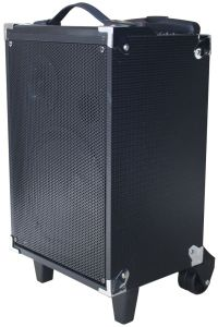 Fabrik-heißer Verkaufs-Lautsprecher mit Bluetooth Radioapparat-Mikrofon