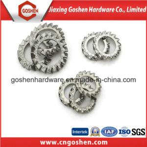 Haute pression en acier inoxydable de la rondelle de blocage dentelée extérieures à bas prix