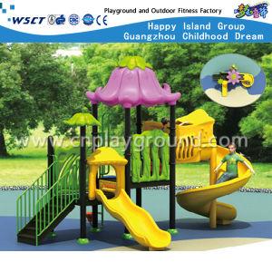 Apparatuur van de Speelplaats van het Park van de Prijs van de fabriek de Openlucht (hc-5802)