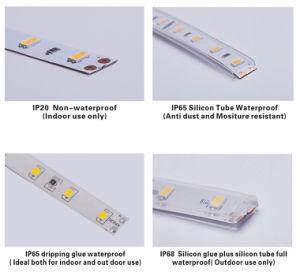 Striscia flessibile impermeabile di IP65 SMD2835 LED con colore bianco