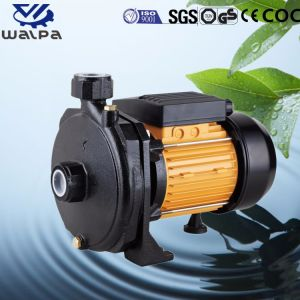 Fin d'aspiration centrifuge horizontale de la pompe à eau électrique en haute qualité
