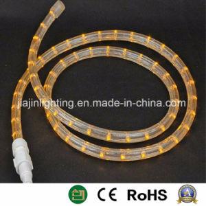 Corda chiara del LED per la decorazione della via e di natale