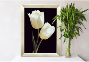 Home Decoration HotelのためのFrame Frame Photo、Frame Picture Flowers PictureまたはHome/Office/Coの2015新しいFasion Modern Promotional Picture Art Wall Paintings