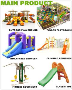 Les enfants de haute qualité en plastique de ce terrain de jeux extérieur pour l'école (12077A)