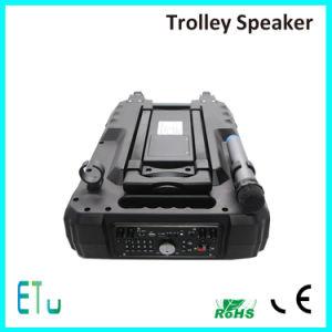 15 Zoll LCD-Laufkatze-aktiver Lautsprecher für heißen Verkauf